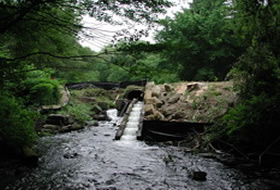 1)	The Billington Street Dam on Town Brook before removal.