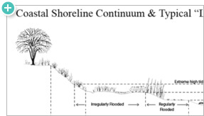 Coastal Shoreline Continuum and Typical Shoreline Treatments