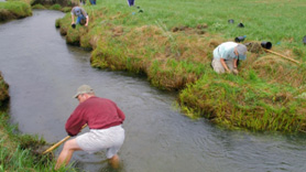 Volunteers restore the stream bank of Round Valley Creek in Idaho